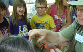 Charles Floyd with Cardinal at Bird Banding Event